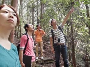 森林療法2707 (5)